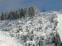 cypress-mountain-2009-opening-day