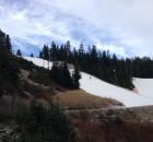 Cypress Mountain Ski Report for November 19, 2014